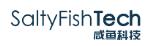 咸鱼科技 SaltyfishTech :$44/年/2GB内存/20GB SSD空间/不限流量/6Mbps-30Mbps端口/KVM/德国CN2 GIA